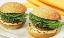 Гамбургер губернский
