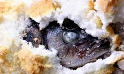 Сибас запеченый в соли